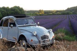 location 2 CV Provence