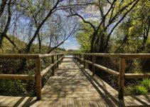 organiser son voyage éco-tourisme